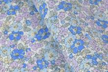 Blue/Saxe